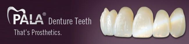 Heraeus kunststof tanden en kiezen